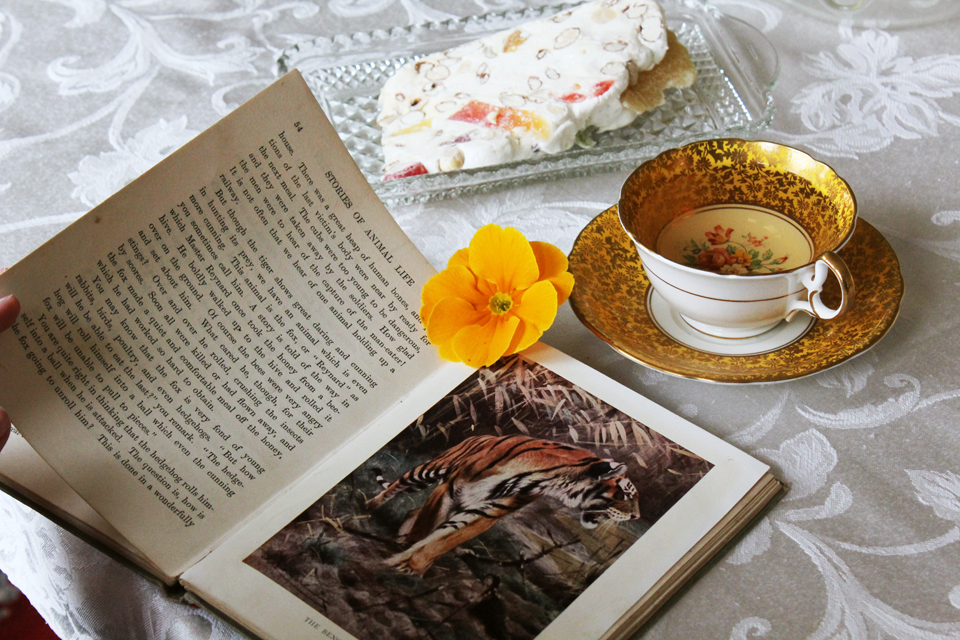 how to make a cup of tea book
