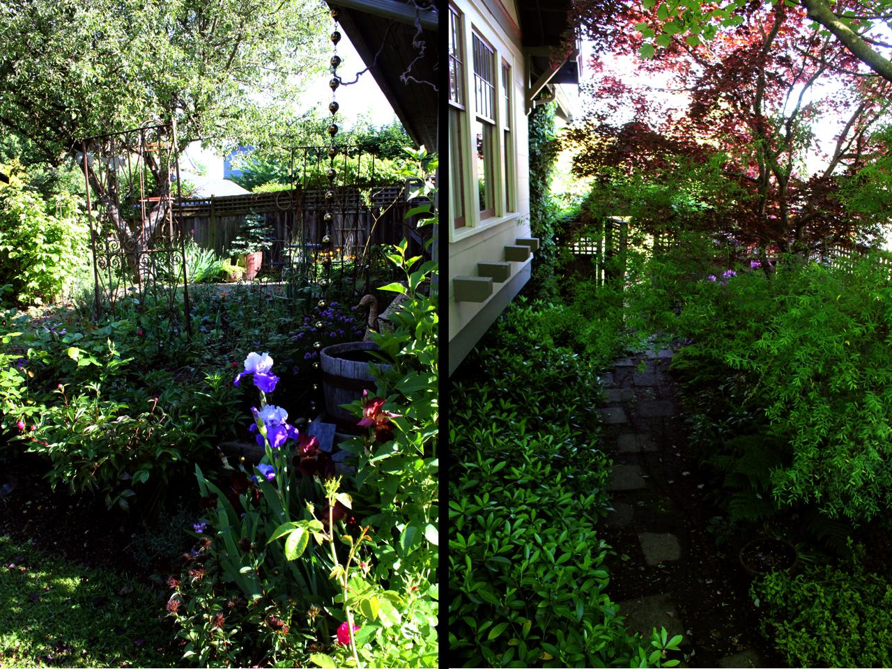 garden2 copy